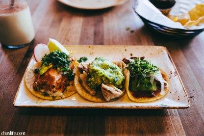 Fancy street tacos