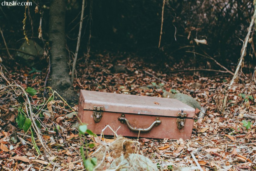 Random box left in the middle of the woods