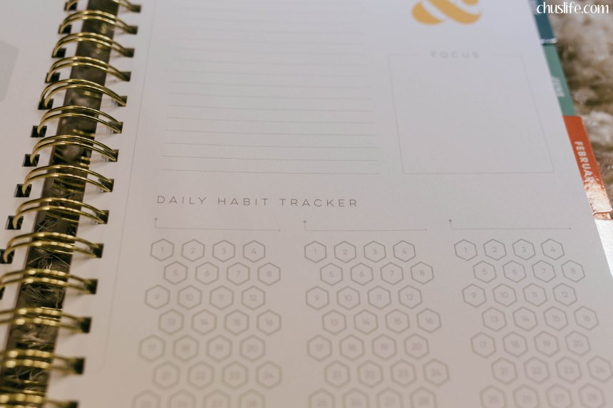 One of my favorite new features: daily habit trackers