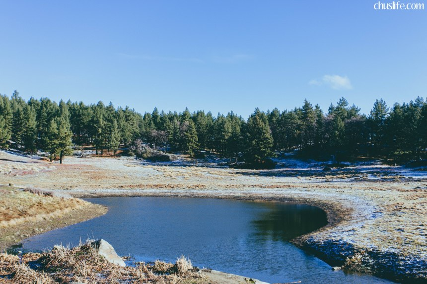 Water of the Woods: a small reservoir at the end of the sunset trail